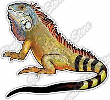 "Green Iguana Lizard Tropical Animal Car Bumper Window Vinyl Sticker Decal 5X4"""