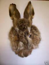 Gordon Griffiths Hare's Mask Natural (HMN)