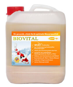 BIOVITAL 5000 ml Milchsäurebakterien, probiotische Filterbakterien, Koi, Teich