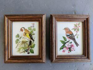 Quadri piccoli con stampe di uccellini su rami fioriti, cornice in legno [2]