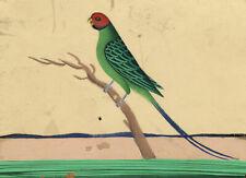 Company School 19th-century Indian Mica Painting in Gouache – Parakeet Bird