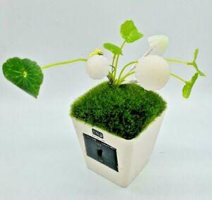 Solar Powered Mushroom LED Desk Lamp Sensor Control Decoration Night Light US