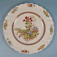 Rosalie Salad Plate Copeland Spode England Chelsea Wicker S1878 (O) AS IS #2