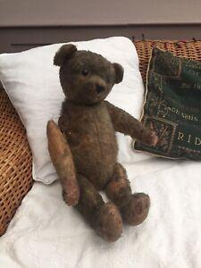 Teddy Bear In Need of TLC