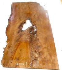 Ancient Kauri Wood! #1000 Geat burl thin stock!