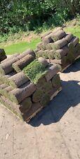 Real Grass Turf Rolls / Lawn Turf Wolverhampton
