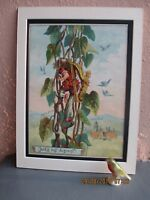 antique lithograph illustration of Jack and the Beanstalk by R. Andre 1888