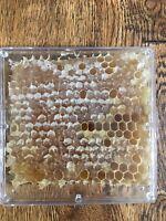 Arizona Sonoran Desert Raw Honey Pure HoneyComb  Grade B miscuts