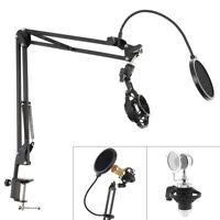 Desktop Microphone Stand Boom Scissor Arm with Screen Pop Filter MIC Shock Mount