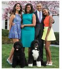 """The  First Family  -PORTRAIT - Poster  (12"""" x 12"""")"""