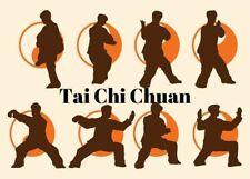 Tai Chi 1St Degree Black Belt Home Study Certification Course! Taiji, Kung Fu