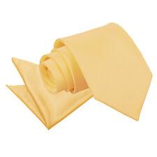 DQT Satin Plain Solid Pale Yellow Mens Classic Tie & Hanky Wedding Set