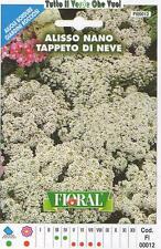 ALISSO NANO TAPPETO DI NEVE - AIUOLE BORDURE ROCCIOSI-FLORAL - BUSTA SEMENTI