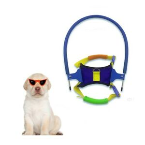 Adjustable Pet Halo Harness Blind Dogs Protective Vest Ring Prevent Collision