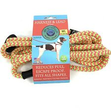 Harness and Lead in One --- Pink and Lime Color for M/L 40-200 lbs Made in USA