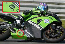 arlen ness berik dragon decal sticker for motorycle