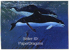 WILLIAM STOUT - Series 1 - Chromium Chase Card C4 - Spectacled Porpoise