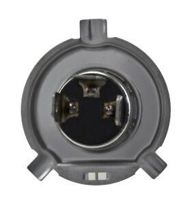Hella Driving/ Fog Light Bulb H71070682