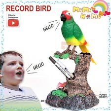 Record Bird Toys Heartful Repeat Bird Parrot