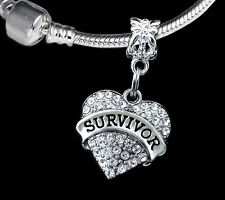 Survivor charm  fits european style bracelet  crystal heart  ( charm only )