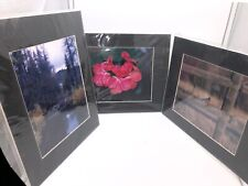 """Set of 3 Professional Nature Photos with Matte 11 x 14"""" Chad Ogburn Photography"""