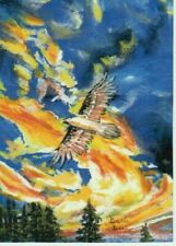 """ACEO/2.5X3.5 LTD Print """"Soaring the searing sky's"""" bird painting by artist #60"""