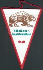 DDR seltener orig. Wimpel Rübeländer Tropfsteinhölen im Harz, I/II