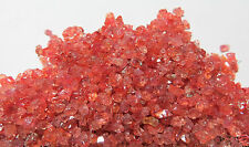 Chatham Padparadscha Sapphire Crystals - over 50 cts!