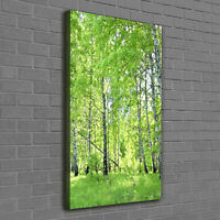 Kunstdruck auf LEINWAND 3 BILDER 120x80cm BIRKENWALD C00886N Made in Germany!