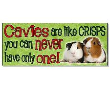 FUNNY CAVIES GUINEA PIG ACRYLIC SIGN Plaque hutch cage run door garden gift idea