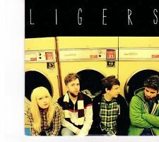 (DZ569) Ligers, Break You / Goodbye - 2013 DJ CD