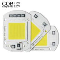 AC 220V 20W 30W 50W LED Flood Light COB Chip Panel Smart IC Driver High Power