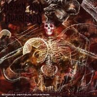 DRAWN AND QUARTERED - MERCILESS HAMMER OF LUCIFER [CD]