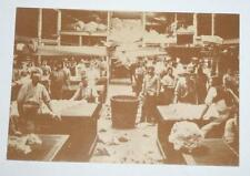 Postcard- Wool Sorting and Classing - Australian Yesteryear Cards - History