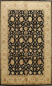 Traditional Floral Agra Oriental Area Rug Hand-knotted Living Room 9'x12' Carpet
