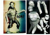 "11""DRACULAR BAT Version Horror Movie Vinyl Model Kit 1/6"
