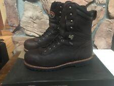 "Irish Setter Men's 83826 9"" Aluminum Toe Work Boot US Men's 14 (14.5) Mesabi"