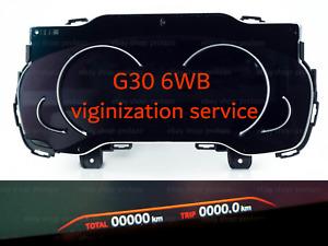 BMW 3 5 7 X5 F30 F10 F15 G11 G30 digital cluster 6WB virginization service