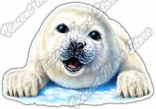 "Cute Seal Mammal Baby Wildlife Animal Sea Car Bumper Vinyl Sticker Decal 5""X4"""