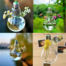 Bulb Shape Hanging Flower Hydroponic Plants Glass Vase Container Pot Home Decor