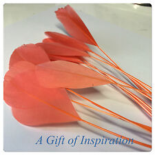 10 x 15-20cm Stripped Salmon Watermelon Dyed Goose Feathers  DIY Craft Millinery