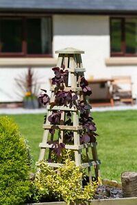 Zest Scafell wooden garden obelisk. 00593