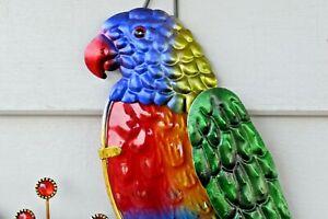 34cm Rainbow Lorikeet Aussie bird wall  art
