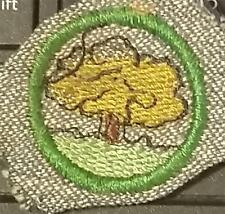 1933-1936 Girl Scout Badge TREE FINDER- GREY GREEN ROUND