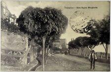 Cartolina Formato Piccolo - Tricarico - Viale Regina Margherita Viaggiata