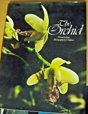 The Orchid, by P Francis Hunt, Photos by T Kijima - HB/DJ 070640808X