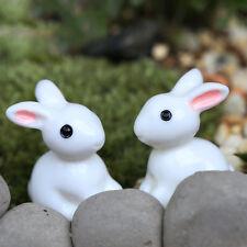2X Miniatura de Conejo Figurita Jardín de Hadas Dollhouse Decoración Macetas H4