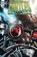 TEENAGE MUTANT NINJA TURTLES Urban Legends #4 (2018) - COVER A - New Bagged