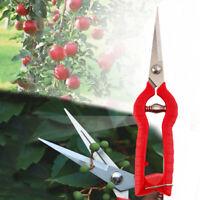 Plant Pruning Scissors Garden Gardening Bonsai Flower Cutter Shears Tool