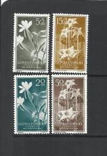 GUINEA ESPAÑOLA. Año: 1956. Tema: PRO INDIGENAS.
